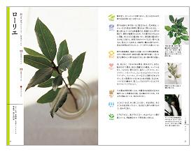 料理に役立つハーブ図鑑(見本)