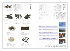 日本料理店のだし図鑑(見本)