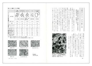 お菓子「こつ」の科学(見本)