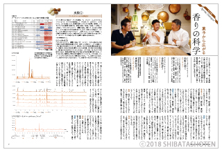 Pâtissier パティシエ(見本)