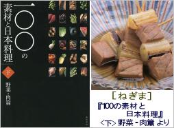 05995_negima.jpg